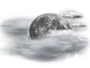 OceanView Weather Forecast  - Tuesday Night - Mostly Cloudy